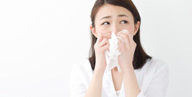 猫アレルギーの治療法と原因や症状について