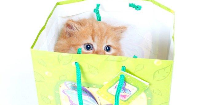 猫モチーフのエコバッグおすすめ22選!おしゃれな猫柄カバンもご紹介♪