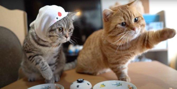 呼び鈴を押すのはおてのもの!どんどんちゅーるを追加してもらう猫ちゃん♡