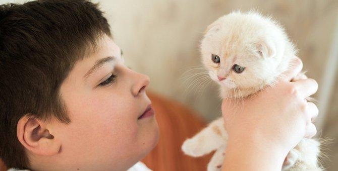 猫から「変なニオイ」がするときに考えられる理由3つ