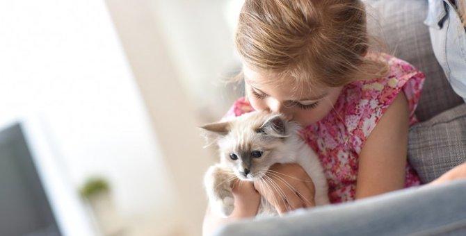 猫が赤ちゃんに危険を及ぼす?パスツレラ菌感染症とは