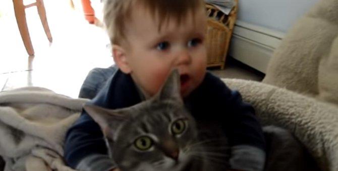 「心を無にして…」愛情表現が激しすぎる赤ちゃんとグッと耐える猫