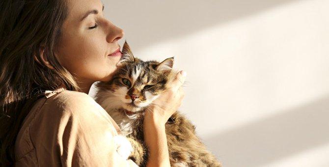 猫の老化で現れる『心・体の変化』7つ!飼い主がすべき対策とは?