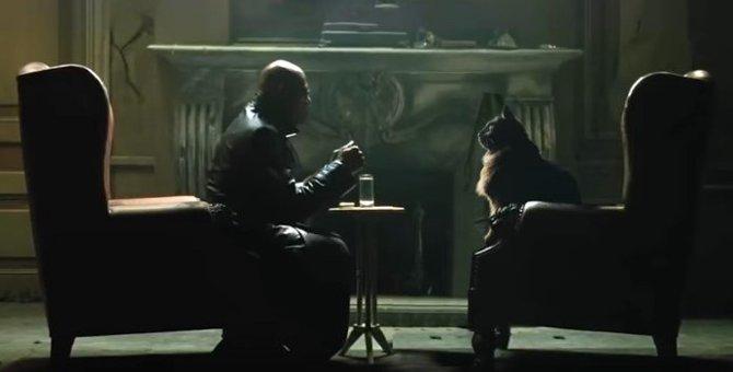 【コラ映画猫】アウル・キティ・ネオが「マトリックス」で選ぶのは?