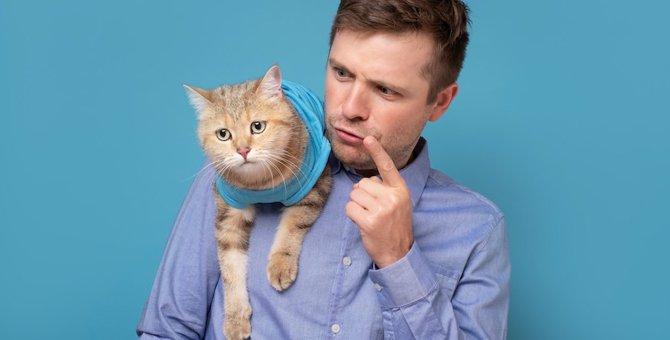 猫を叱るのは意味がない?猫にやめてほしい時にすべき対応5つ