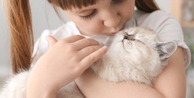 猫が思う『最高の飼い主』の条件4選
