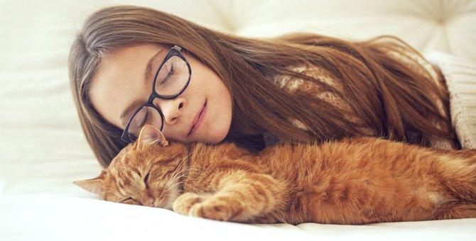 猫は飼い主の行動を真似する?
