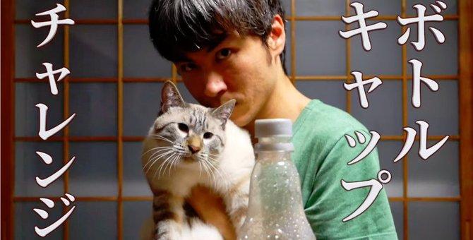 流行りのアレ!猫ちゃんマンのボトルキャップチャレンジ!!
