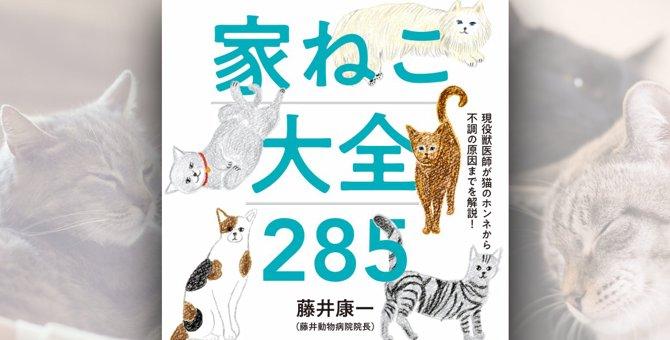 大人気獣医師の初書籍『家ねこ大全285』愛猫家が買うべき理由と感想