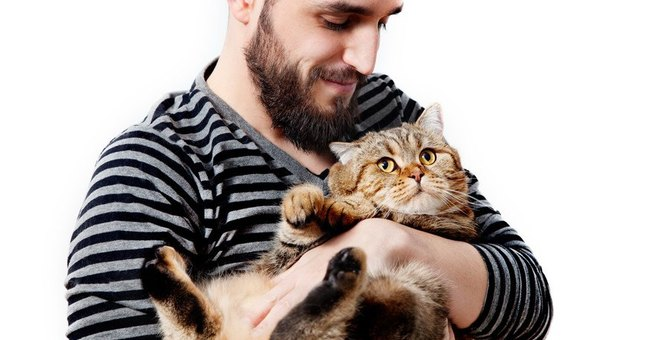 あなたは大丈夫?猫の甘やかしすぎ診断7項目