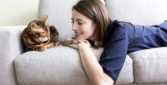 猫の気持ちがわかる13の鳴き声や行動