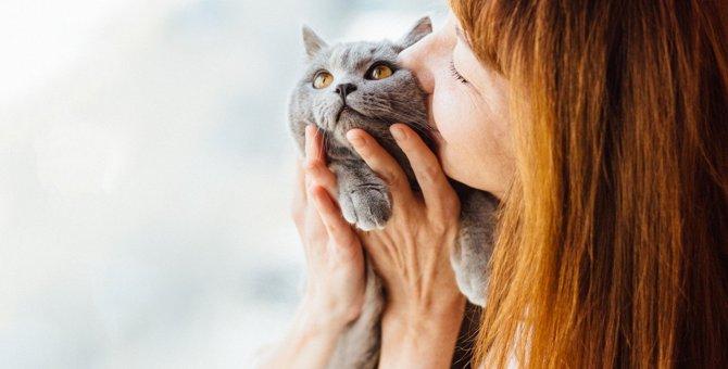 猫から『いい匂い』がするのはなぜ?つい嗅いでしまう体の部位ランキングTOP3!