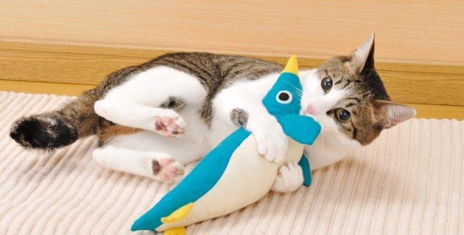 猫のグッズ「けりぐるみ」を選ぶ5つのポイント