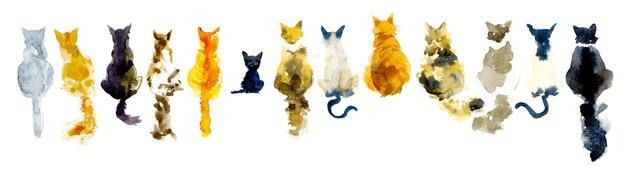 猫の水彩画7連発!自分で描く時のコツ