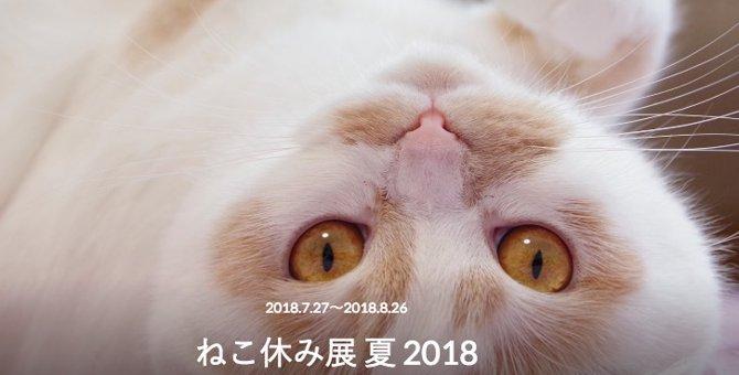 ねこ休み展『2018夏』が開催!出展の内容は?