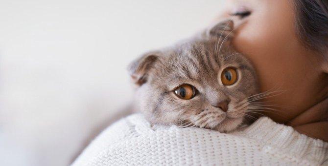 猫が失望してしまう『飼い主の問題行動』5つ!絶対しちゃダメな態度とは?