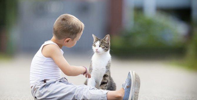猫にしてはいけないNGな『話し方』3つ