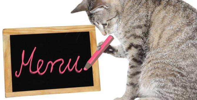 猫に療法食を与える時は獣医さんに相談しよう!フードの選び方やおすすめの商品