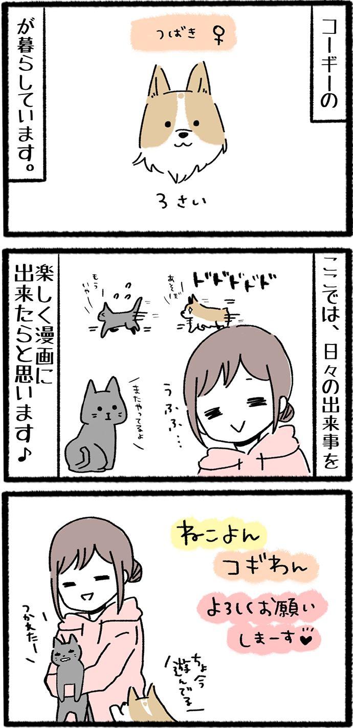ねこよんコギわん第1話2枚目