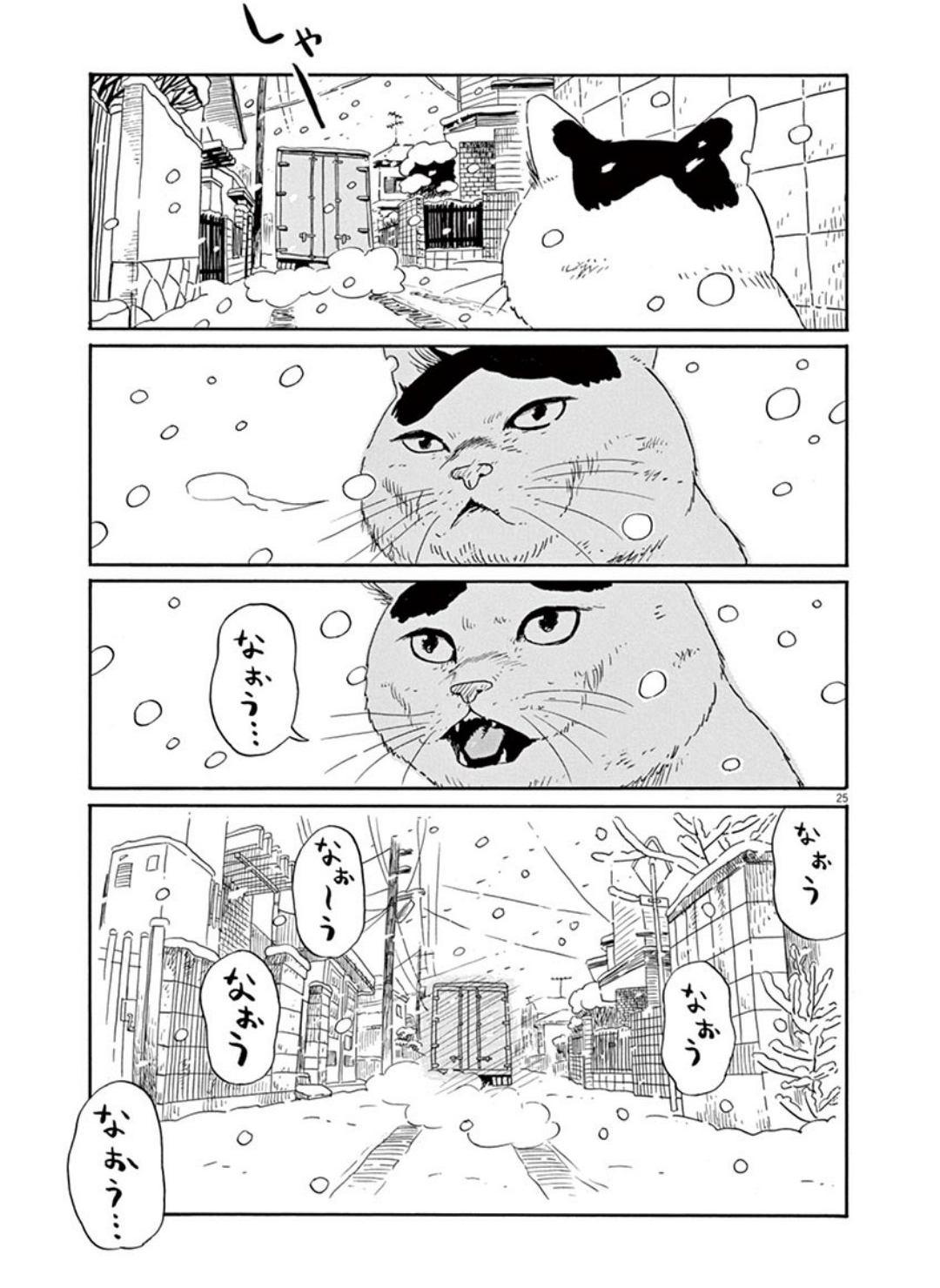 家猫ぶんちゃんの一年p25