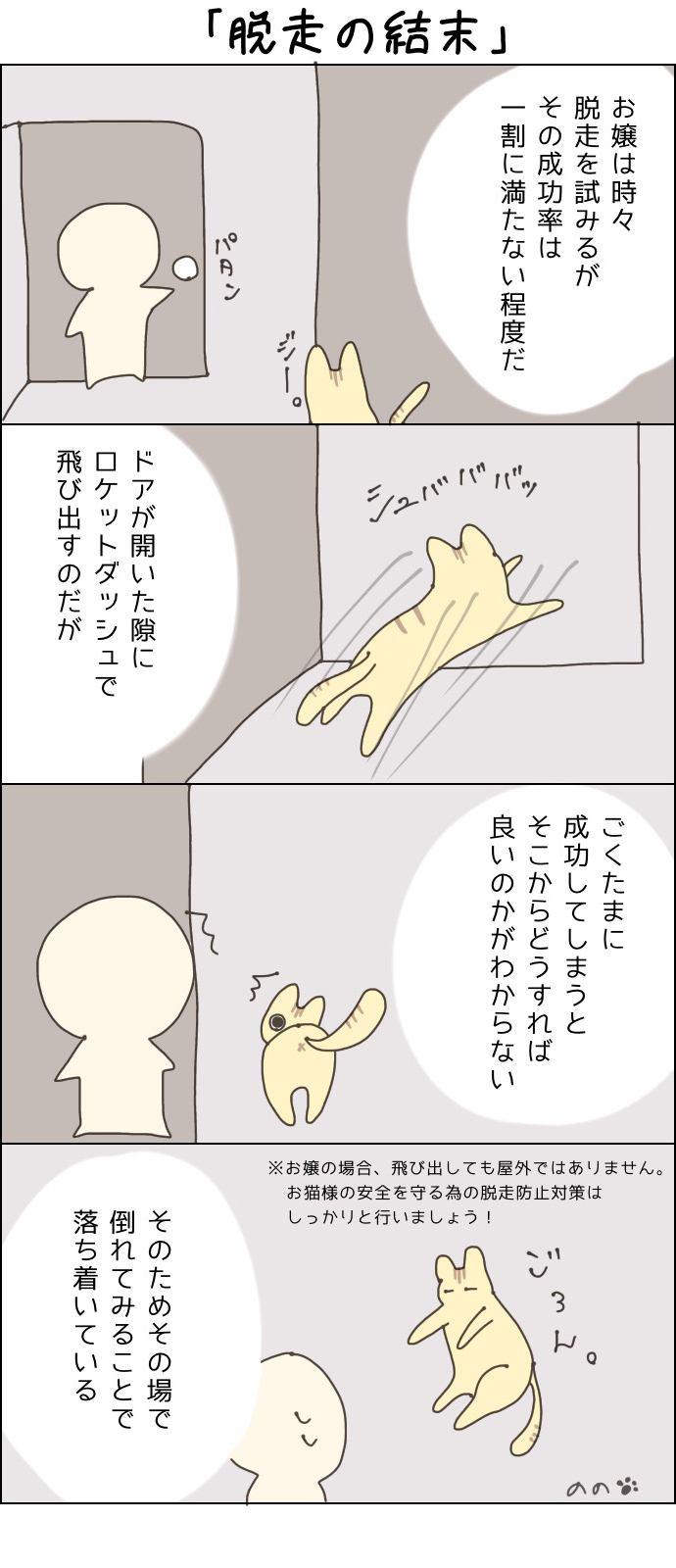 きょうも、お猫様はいとをかし。第22話