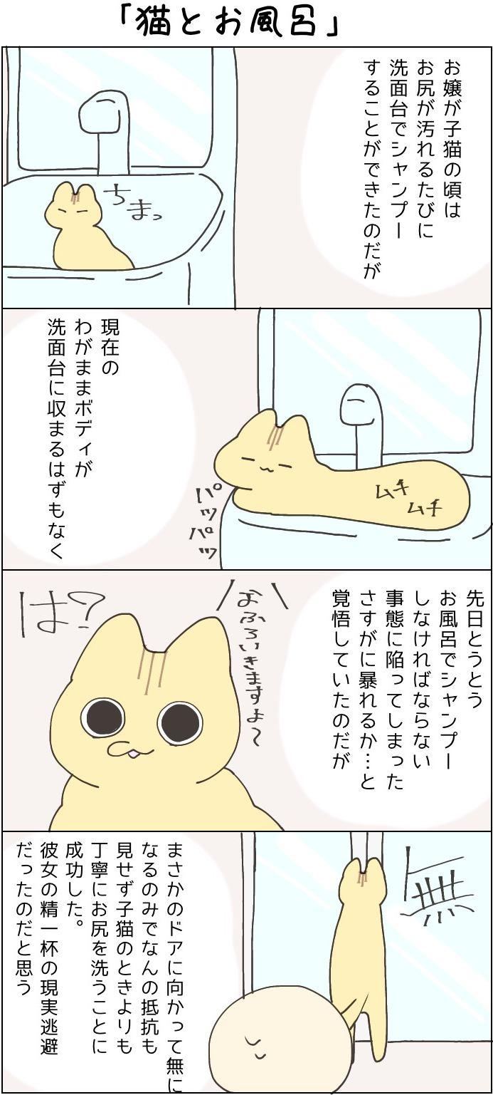 きょうも、お猫様はいとをかし。第38話
