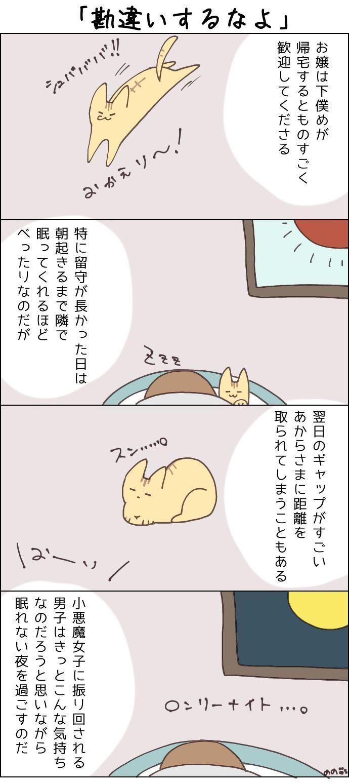 きょうも、お猫様はいとをかし。第19話