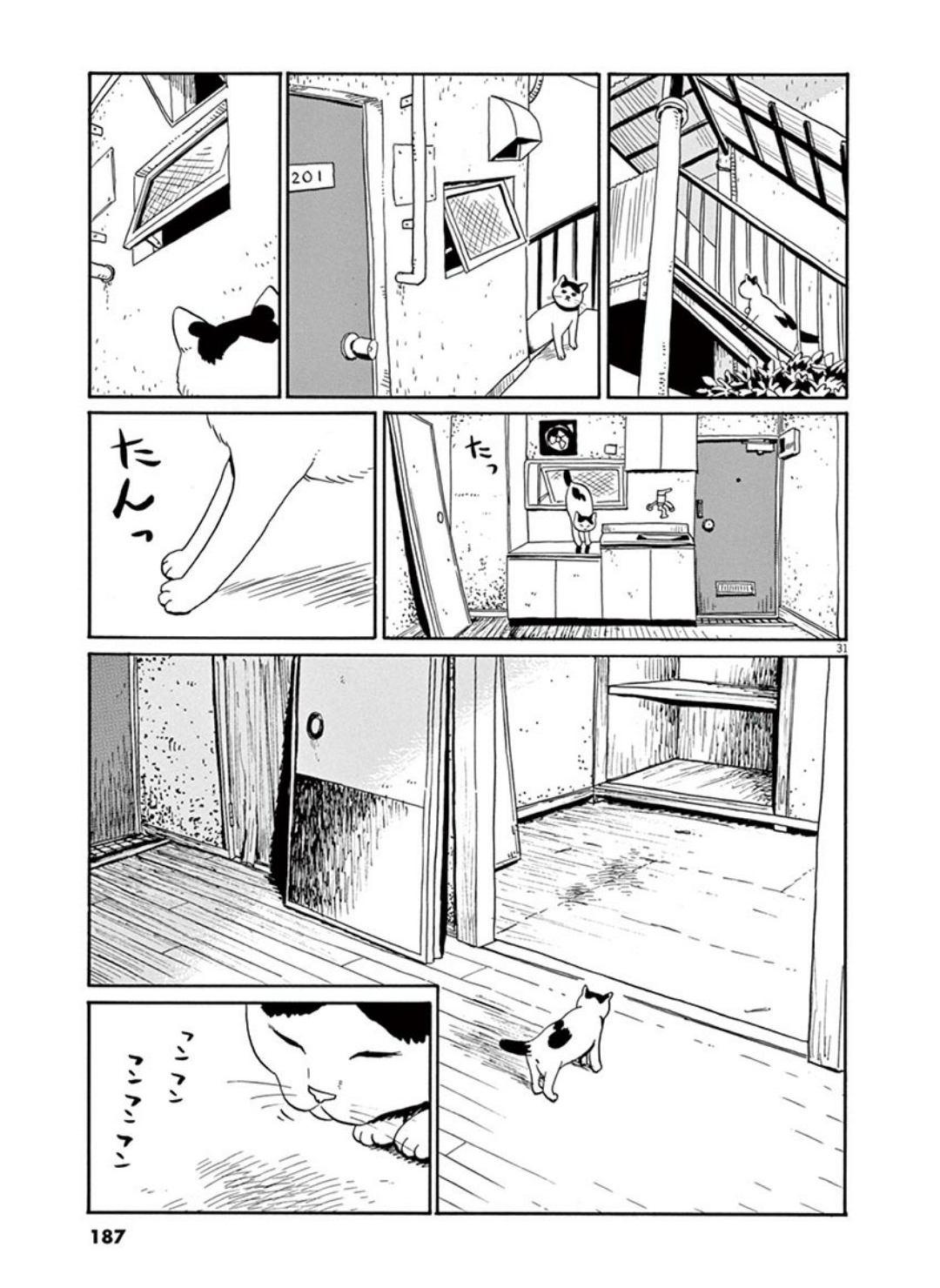 家猫ぶんちゃんの一年p31