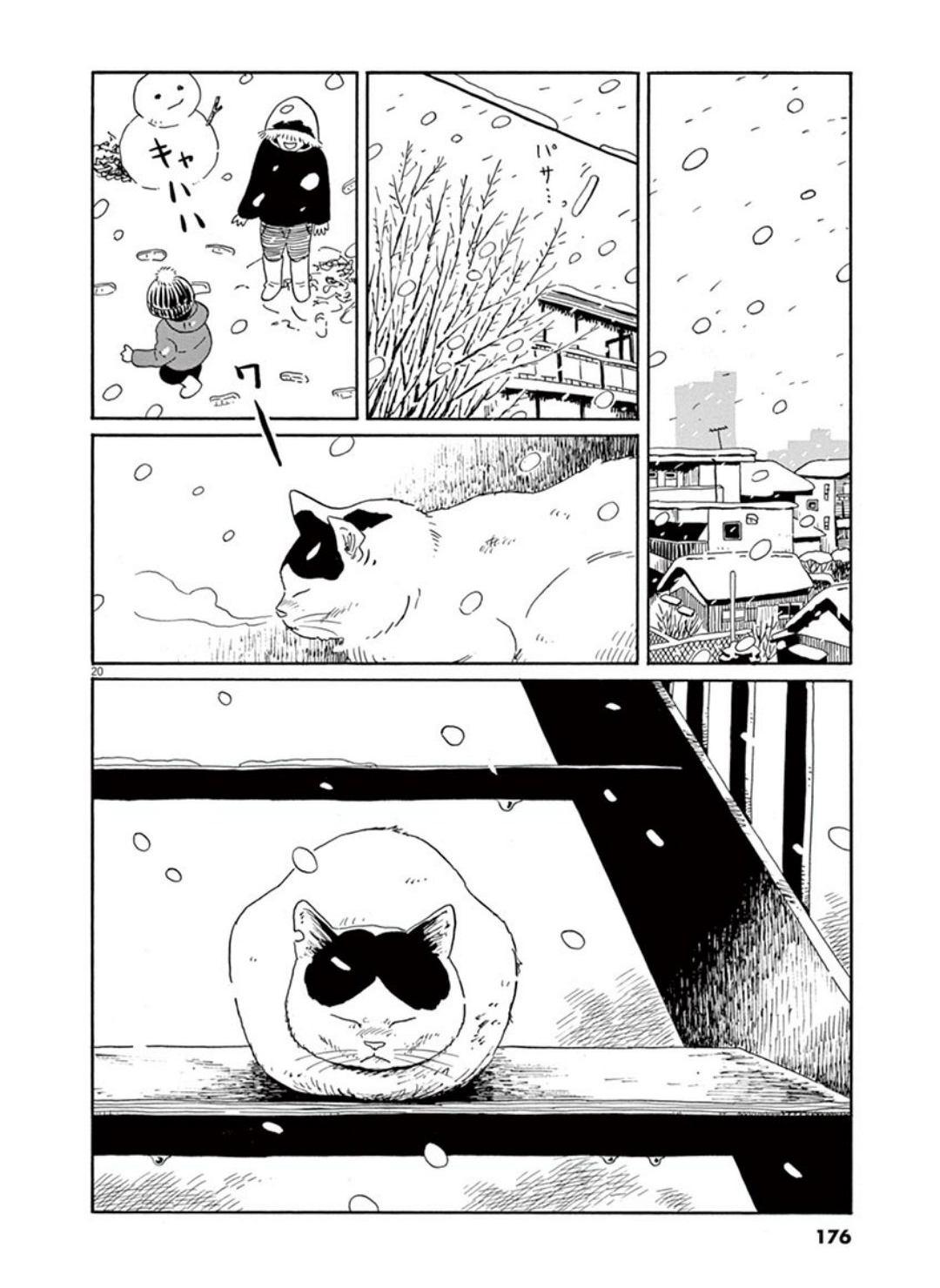 家猫ぶんちゃんの一年p20