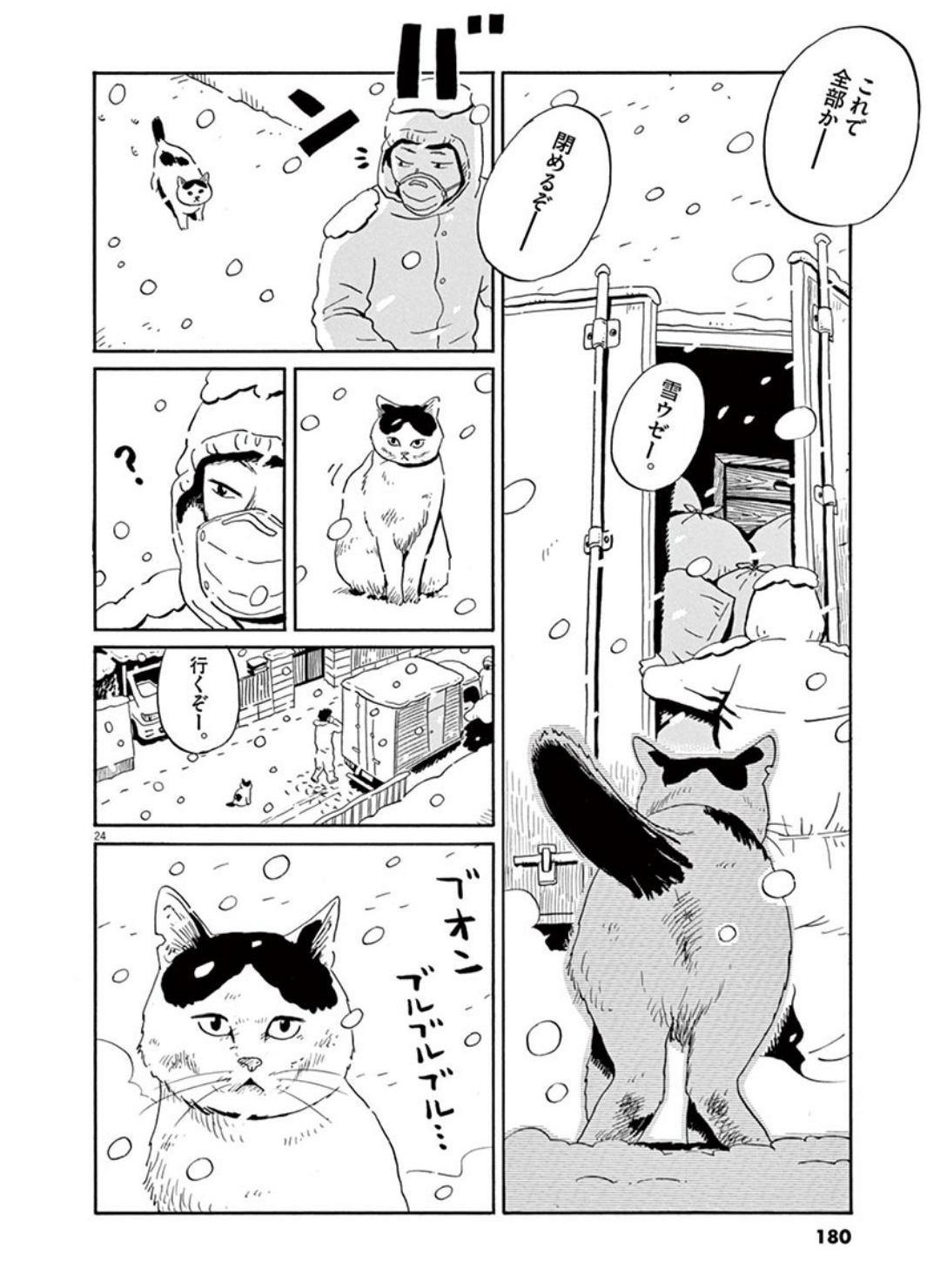 家猫ぶんちゃんの一年p24