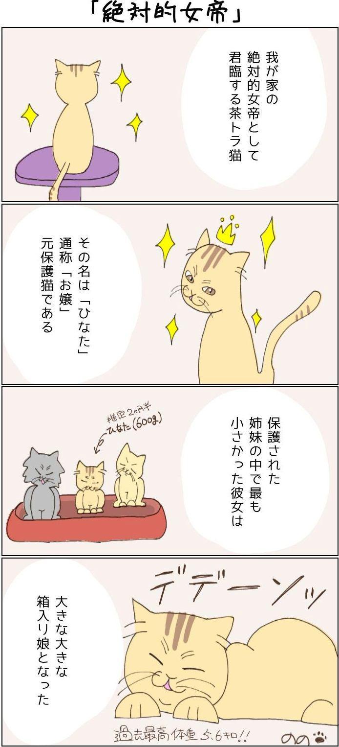 きょうも、お猫様はいとをかし。第1回