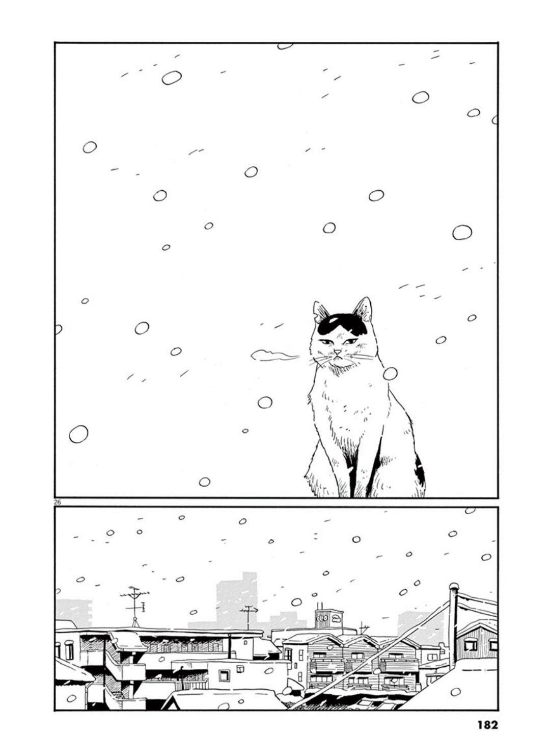 家猫ぶんちゃんの一年p26