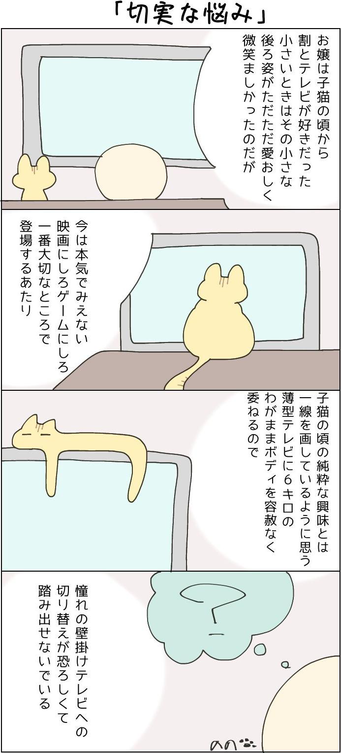 きょうも、お猫様はいとをかし。第35話