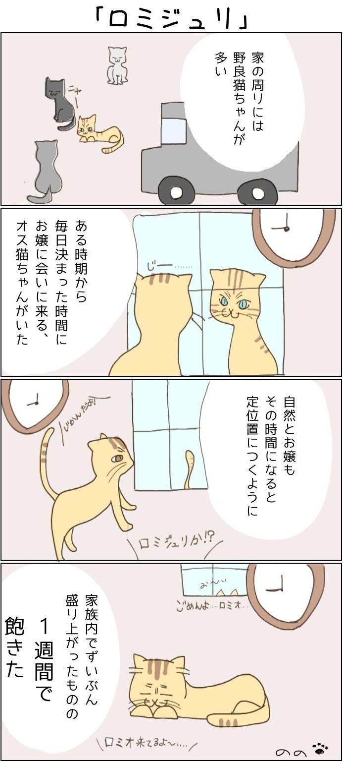 きょうも、お猫様はいとをかし。第4話