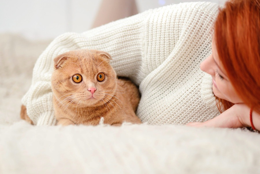 愛猫が自宅から逃げ出してしまったらどうする?!