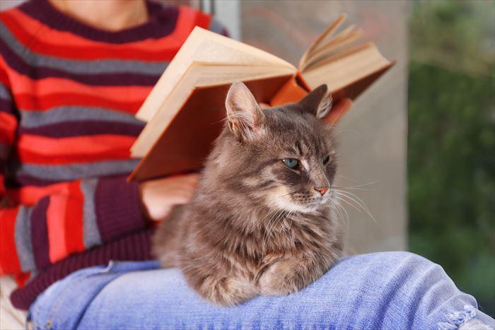 猫のおしりが臭う原因とケアの仕方について