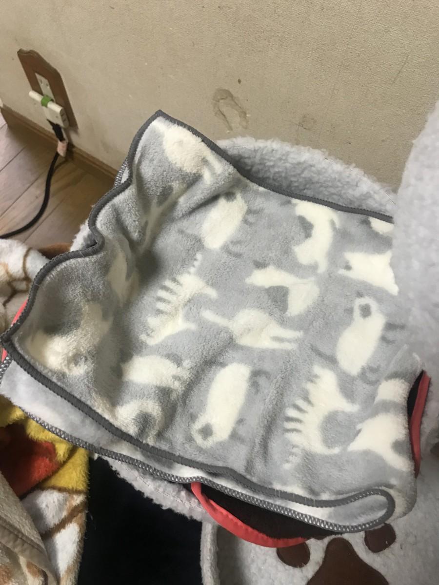 100円ショップ「セリア」で見つけた可愛い猫グッズ6選