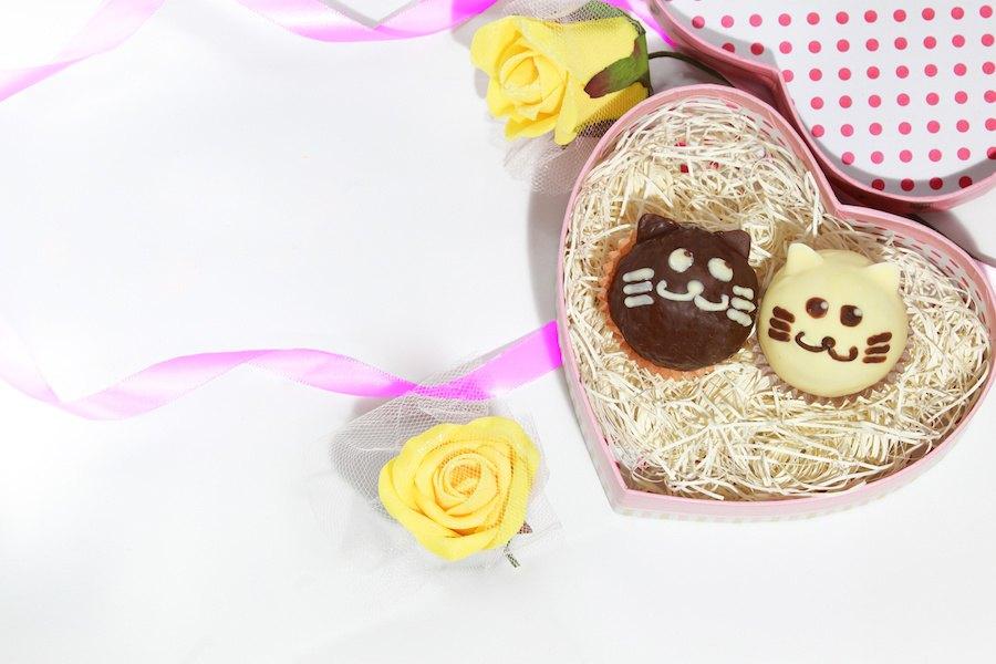 猫の形のお菓子がとってもかわいい!おすすめ商品