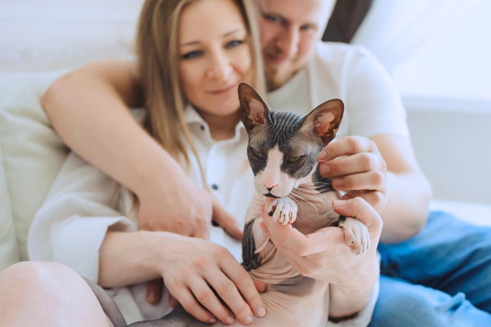 毛のない猫の特徴とその代表的な猫種
