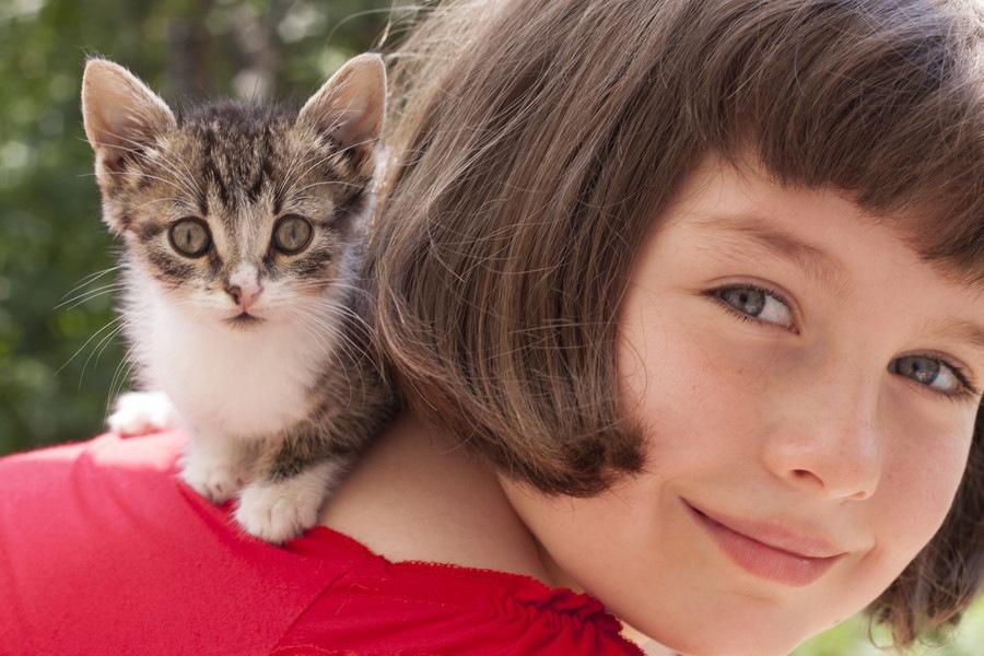 子猫の噛み癖の治し方