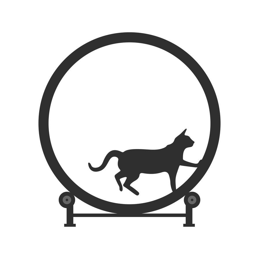 猫用のルームランナー「Cat Exercise Wheel」がすごい!使い方や動画