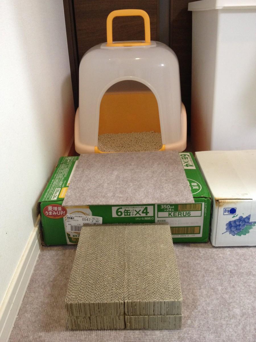 置くだけ簡単!高齢猫に作ってあげたい、空き箱トイレステップとご飯台