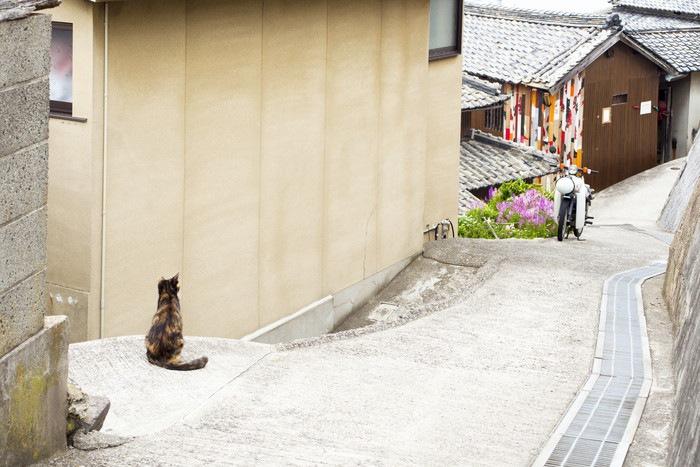 男木島の街並みの写真