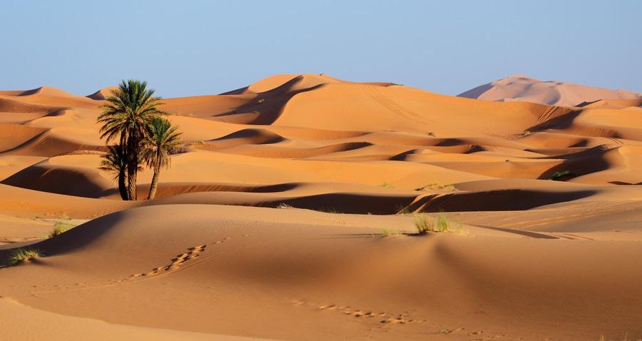 砂漠イメージ