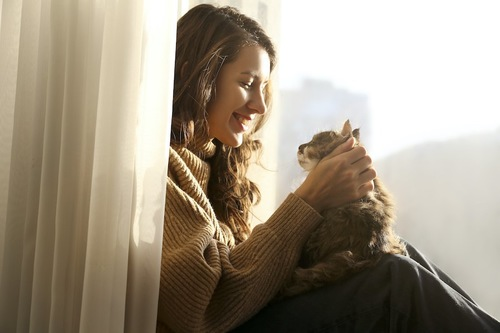 カーテンの近くに座る女性の膝に乗って甘える猫