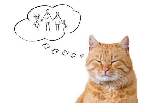 飼い主の家族を思い出す猫