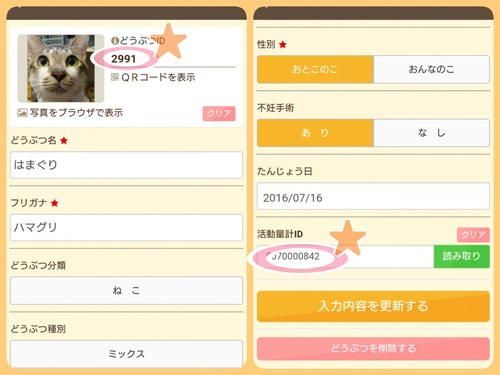 猫情報の登録画面