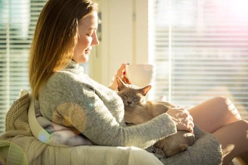 女性の膝の上で撫でられる猫