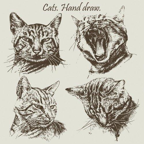 4匹の猫のリアルなイラスト