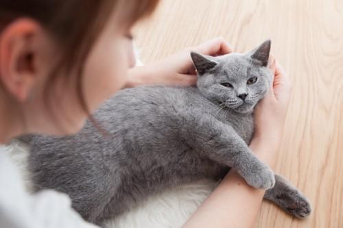 女性に撫でられて嬉しそうな猫